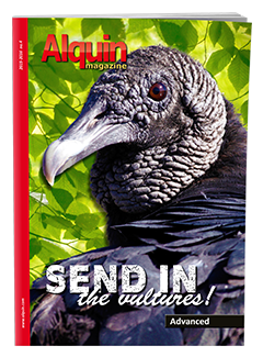 Alquin Magazine No. 4